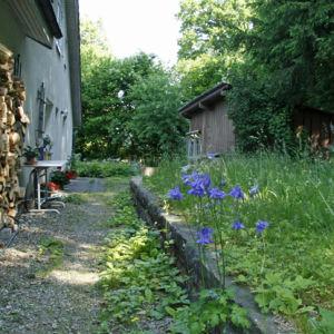 Garten2012-17