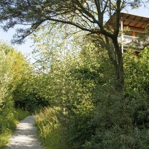 Garten2012-19