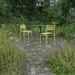 Garten2012-8