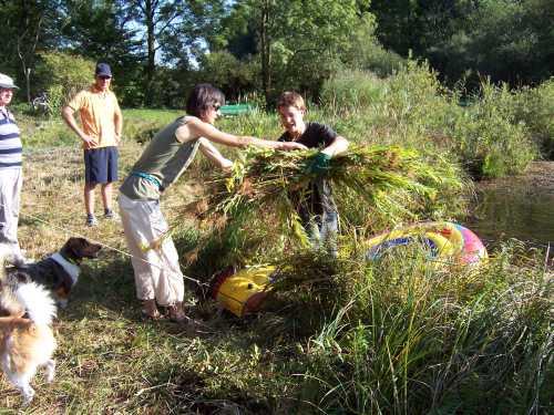 Goldruten mit  Familie Sambeth bei Ernte 2006