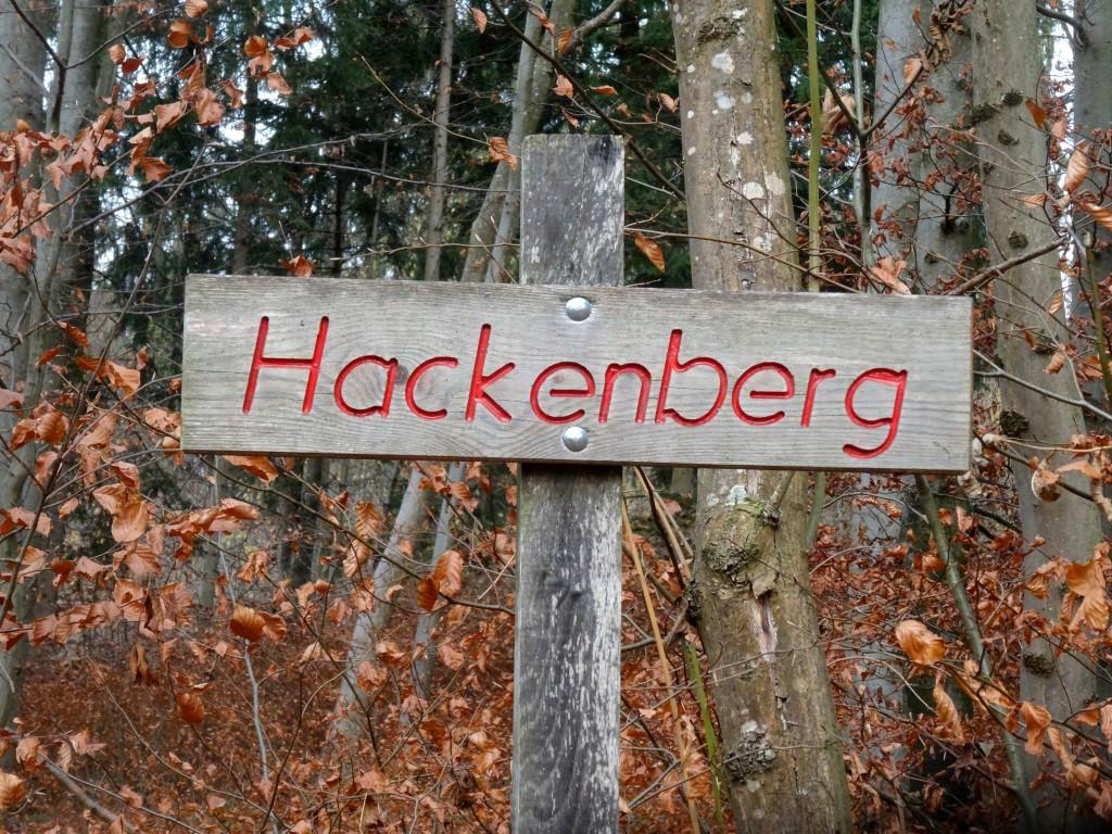 Nistkästen auf dem Hackenberg