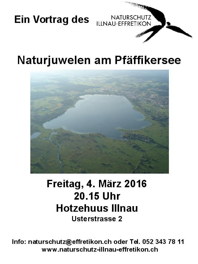 Plakat_Vortrag_Pfaeffikersee_GV_2016
