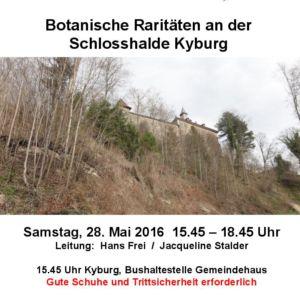 Botanische Raritäten an der Schlosshalde Kyburg