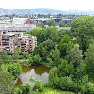 Grünzonen im Siedlungsraum bieten verschiedenen Vogelarten Lebensraum. Bild: BirdLife Schweiz