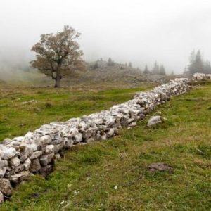 Vielfältige Kulturlandschaft im Breccaschlund FR – ein Gewinn für Mensch und Natur © Pro Natura / Matthias Sorg