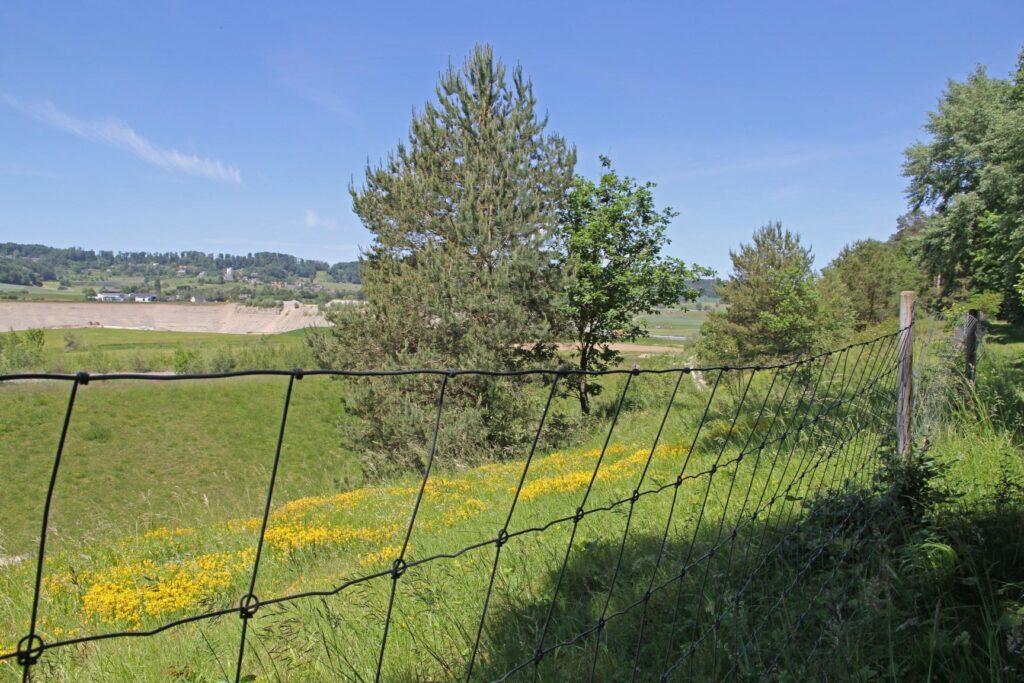 Zaun für den Schutz der Flora und Fauna