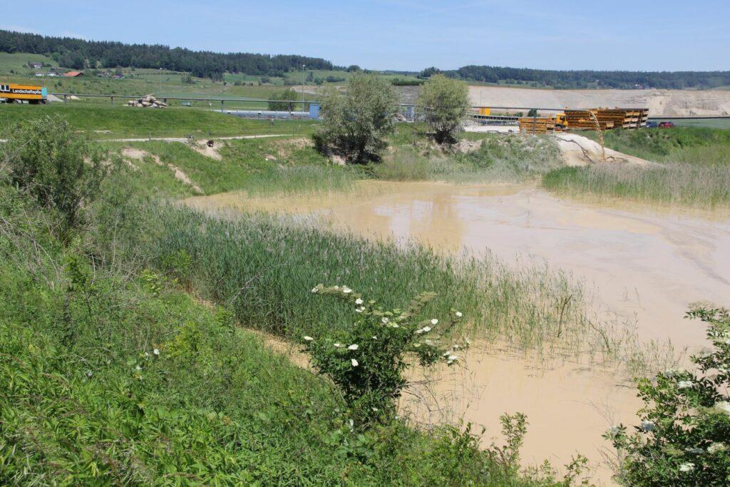 am Rand eines Teichs