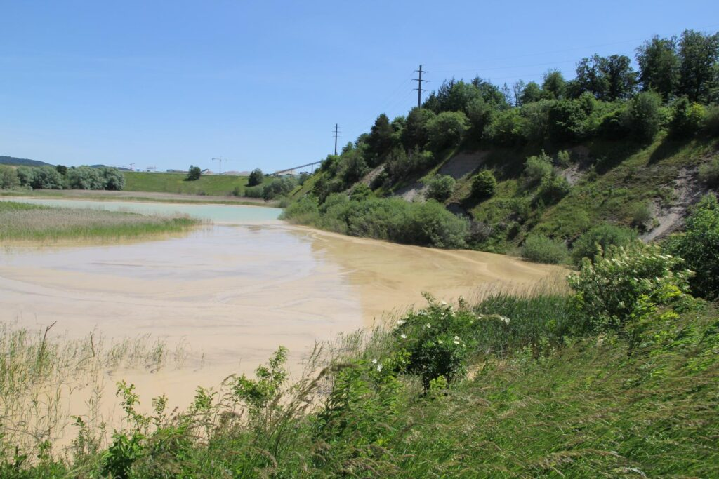hinterer Teil des Teichs