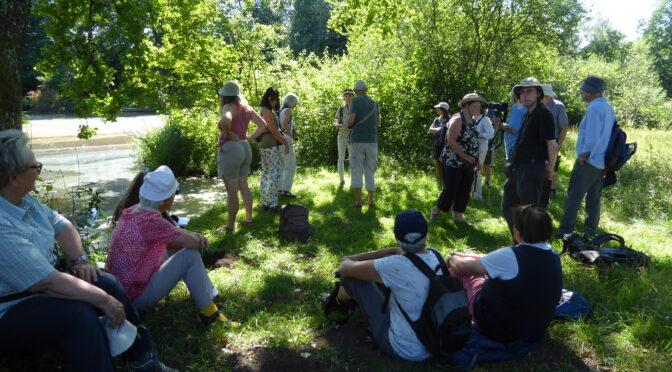 Entspannte Exkursion an einem heissen Nachmittag: Libellen entdecken, zuhören, austauschen.